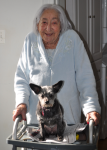 94 year old woman post hip replacement surgery