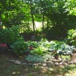 Gardening Tools For The Elderly