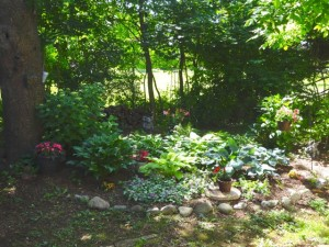 Dad's memorial garden