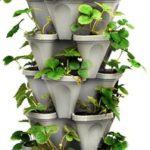 Gardening tools for the elderly good gifts for senior for Indoor gardening for seniors